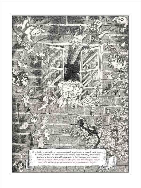 Billy Brouillard : une nouvelle encyclopédie drolatique et espiègle sur les matous